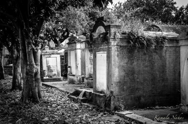 Lafayette Cemetery No.1-2