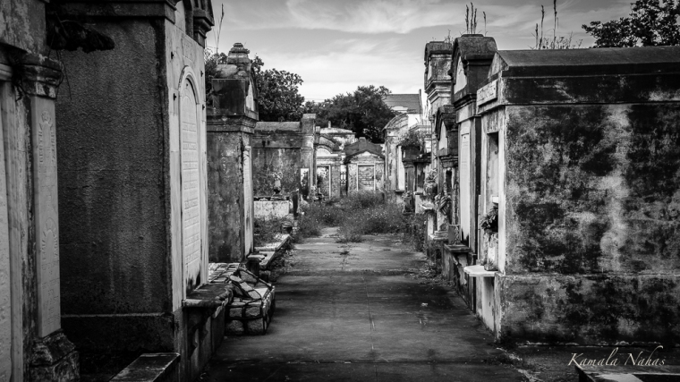 Lafayette Cemetery No.1-5