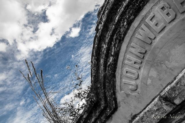 Lafayette Cemetery No.1-6